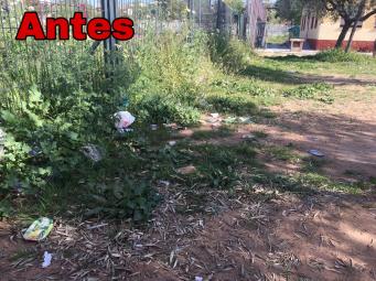 Limpieza de patios (29 mar 2019 16-34) (1)